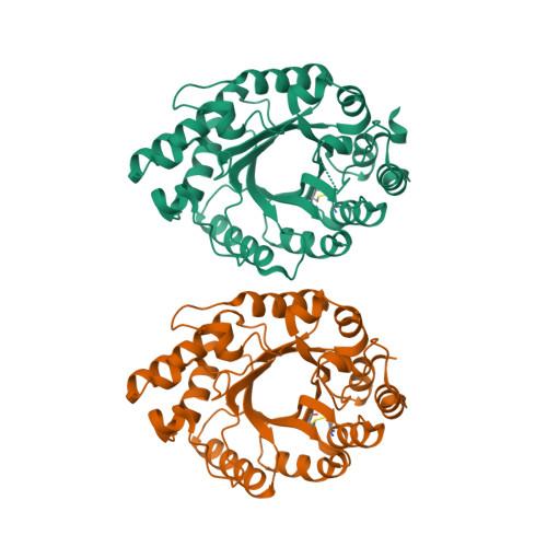 7K4P logo