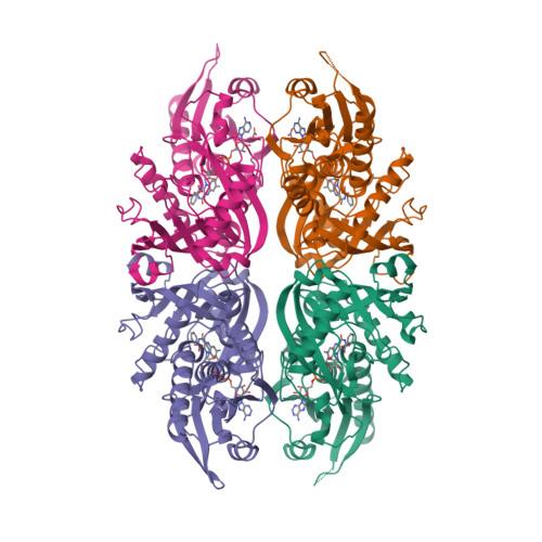 DAO logo
