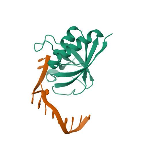 HLTF logo