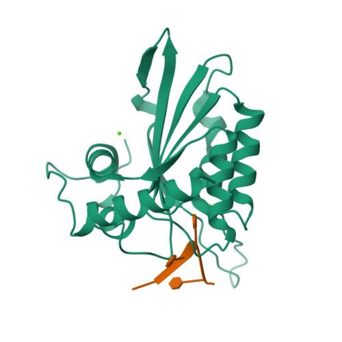 APOBEC3A logo