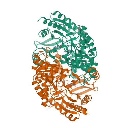 bioA logo