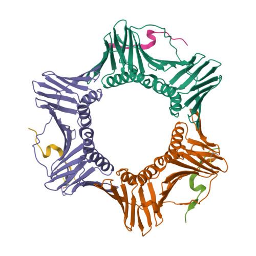 PCNA logo