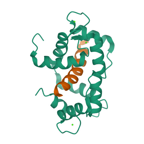 Camk1 logo