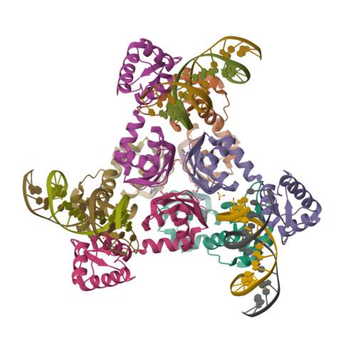 argR logo