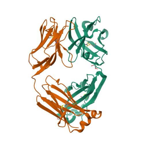 Pertuzumab structure rendering