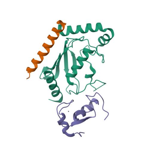 UBE2G2 logo