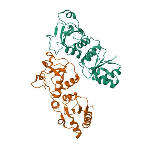BARD1 logo