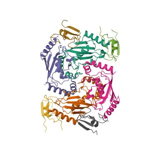UBE2D2 logo