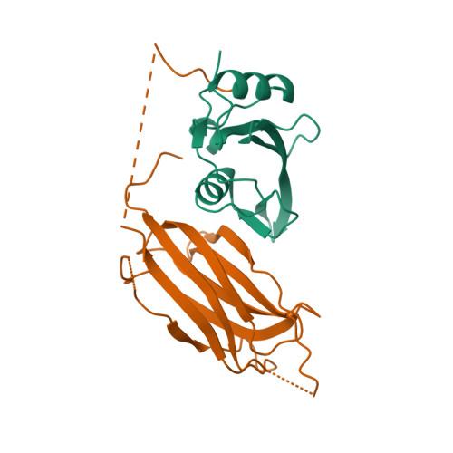Nedd4 logo