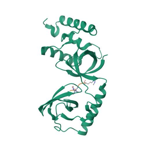 SND1 logo