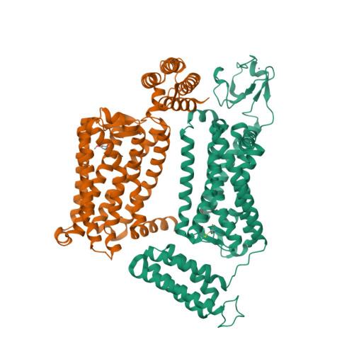MTNR1B logo
