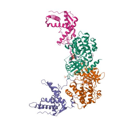 Prkaca logo