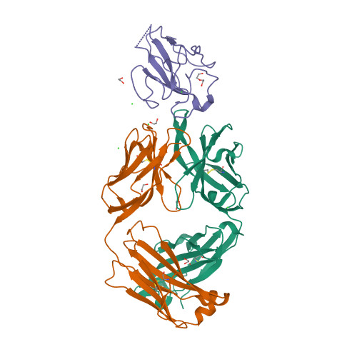 7N3D logo