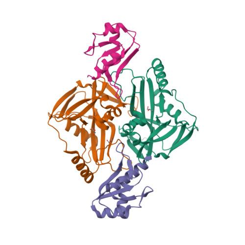 3N9U image