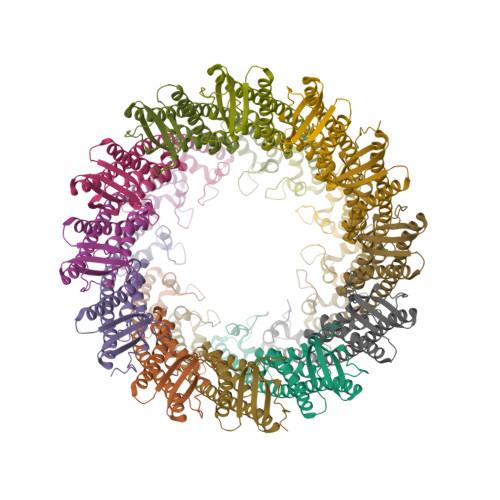 wzzB logo