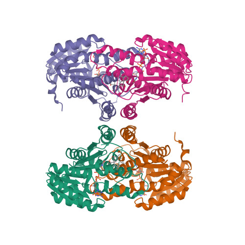 HSD11B1 logo
