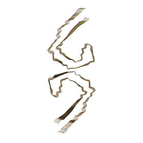 7NRQ logo