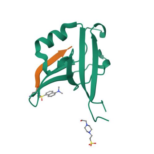 NRXN2 logo