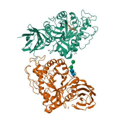 7O0E logo