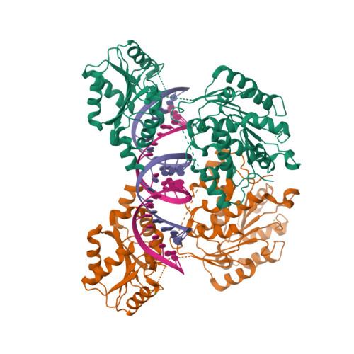 DDX3X logo