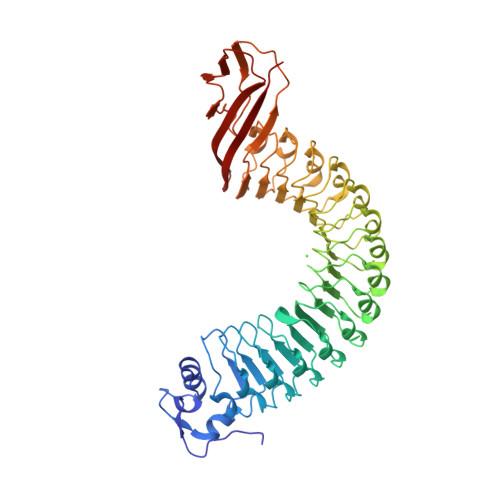 Rcsb Pdb 1o6v Internalin Inla Listeria Monocytogenes Functional Domain Uncomplexed