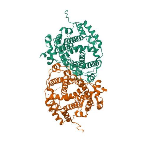 7OC5 logo
