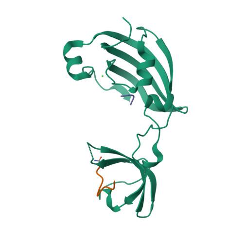 rntA logo