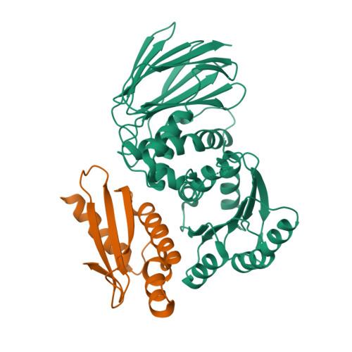iraD logo