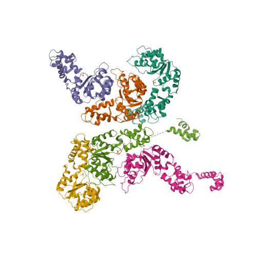 zraR logo