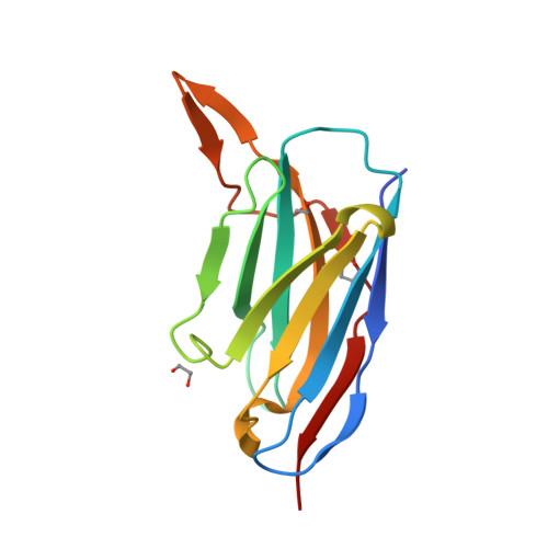 7ON5 logo
