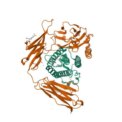 Ifna5 logo