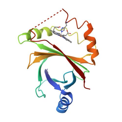 hmoB logo