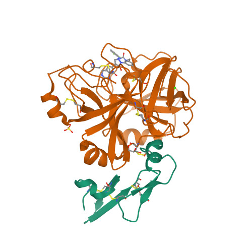 Eptacog alfa (activated) structure rendering