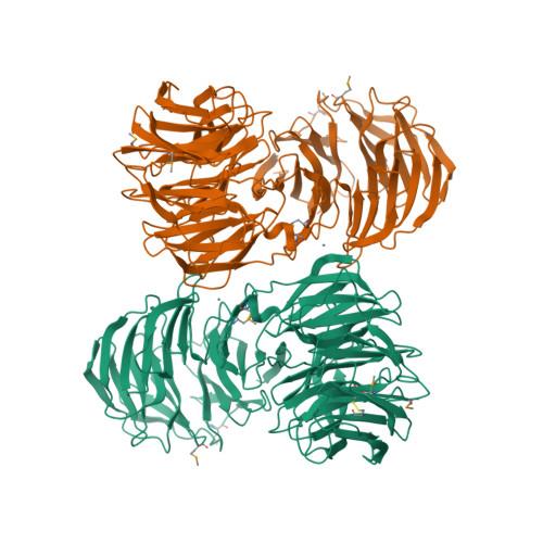 AIP1 logo