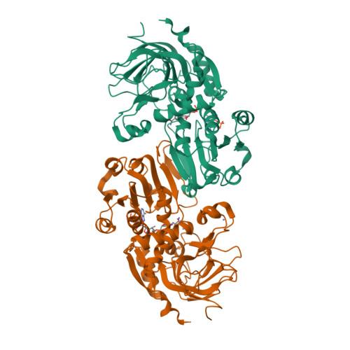 ADH6 logo