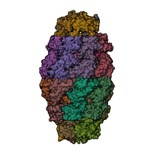 4PJ1 image