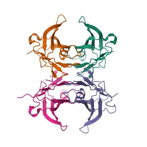 urah logo