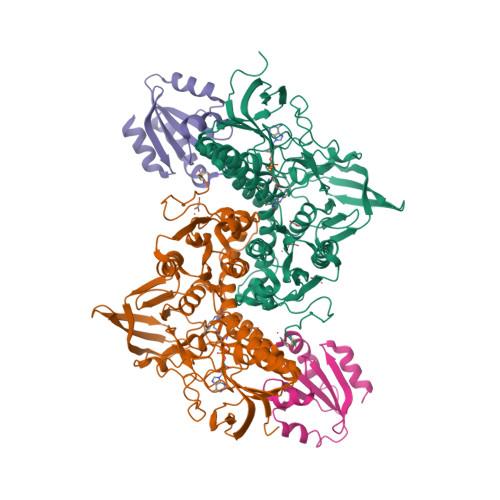 TXNRD1 logo