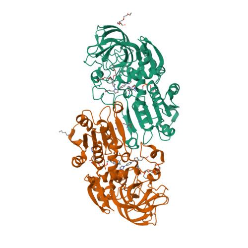 ADH5 logo