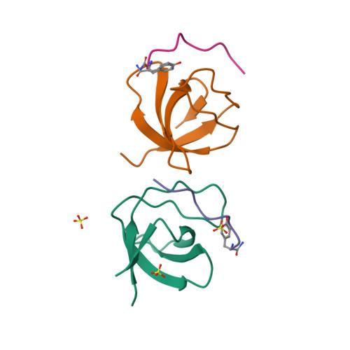 CD3E logo