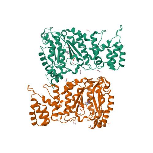 PRIM1 logo