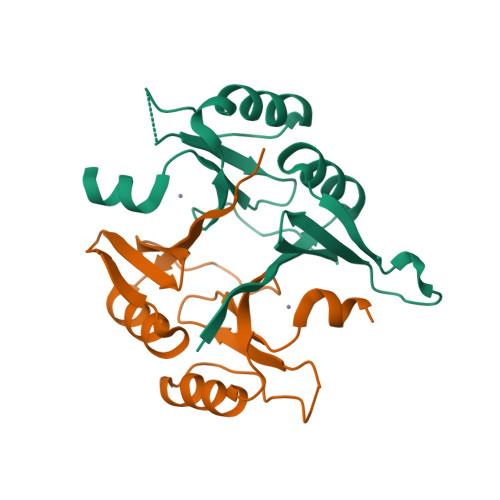 1R9C image