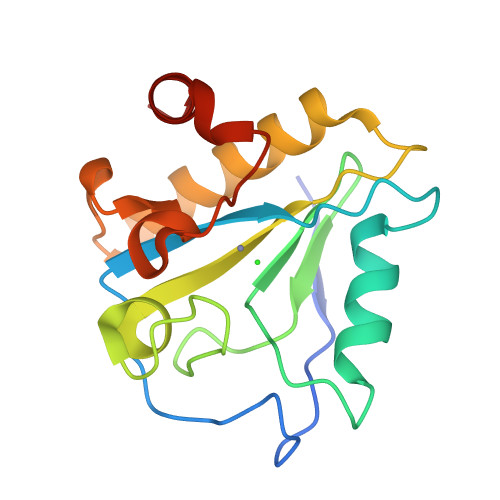 xlyA logo