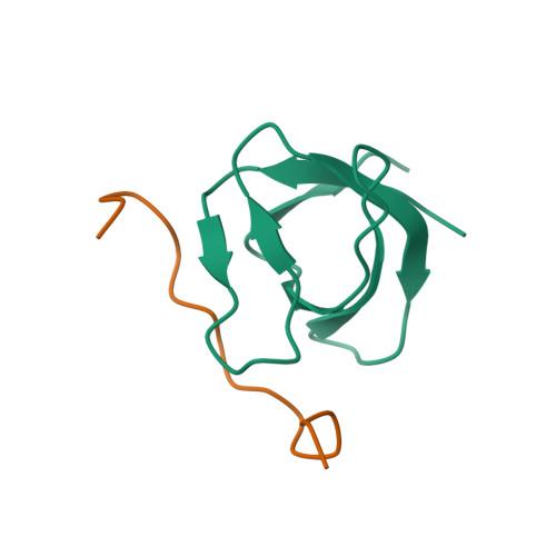 ARK1 logo