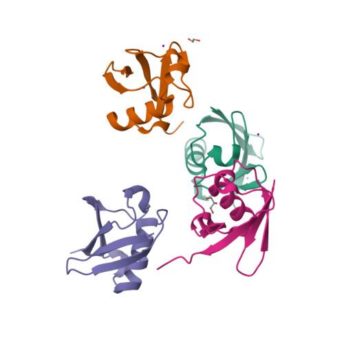 UBA52 logo
