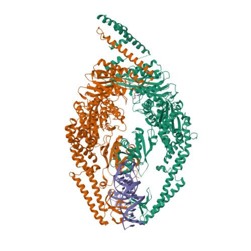 MSH2 logo