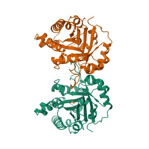 8TIM logo