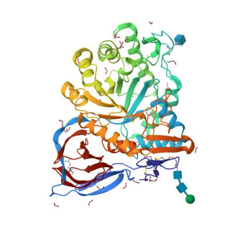 Velaglucerase alfa structure rendering