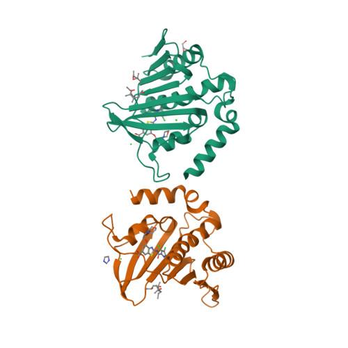 gyrB logo