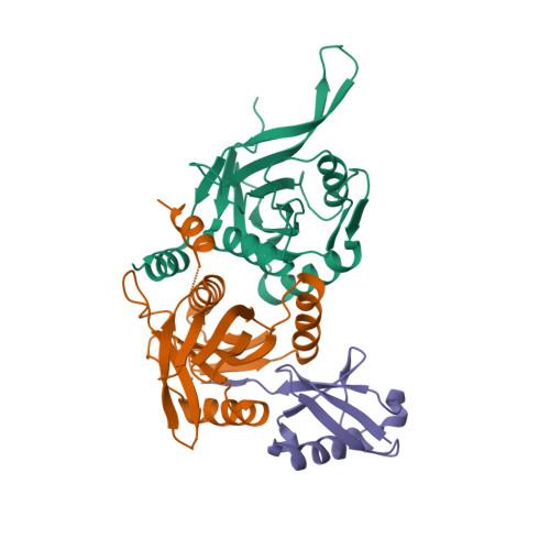 RPN8 logo